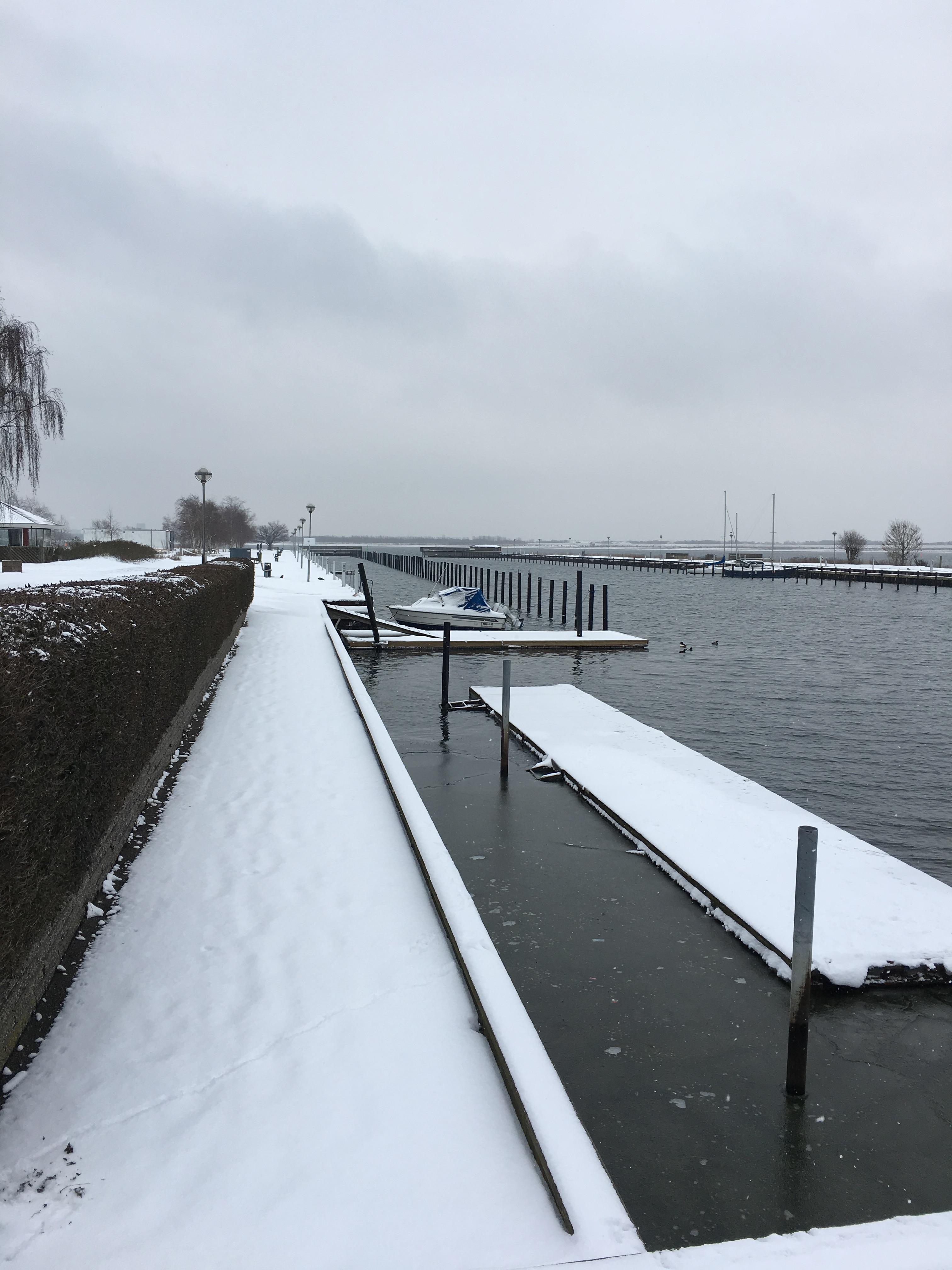 Hvidovre Lystbådehavn, vinter 2017