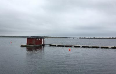 Hvidovre vinterbadere. Foto: oktober 2017.